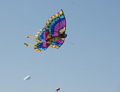 12th Annual Blue Ridge Kite Festival; Green Hill Park: 4/17/10