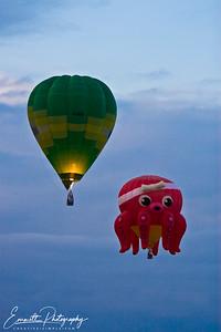 20080208_Balloon_Fest_037