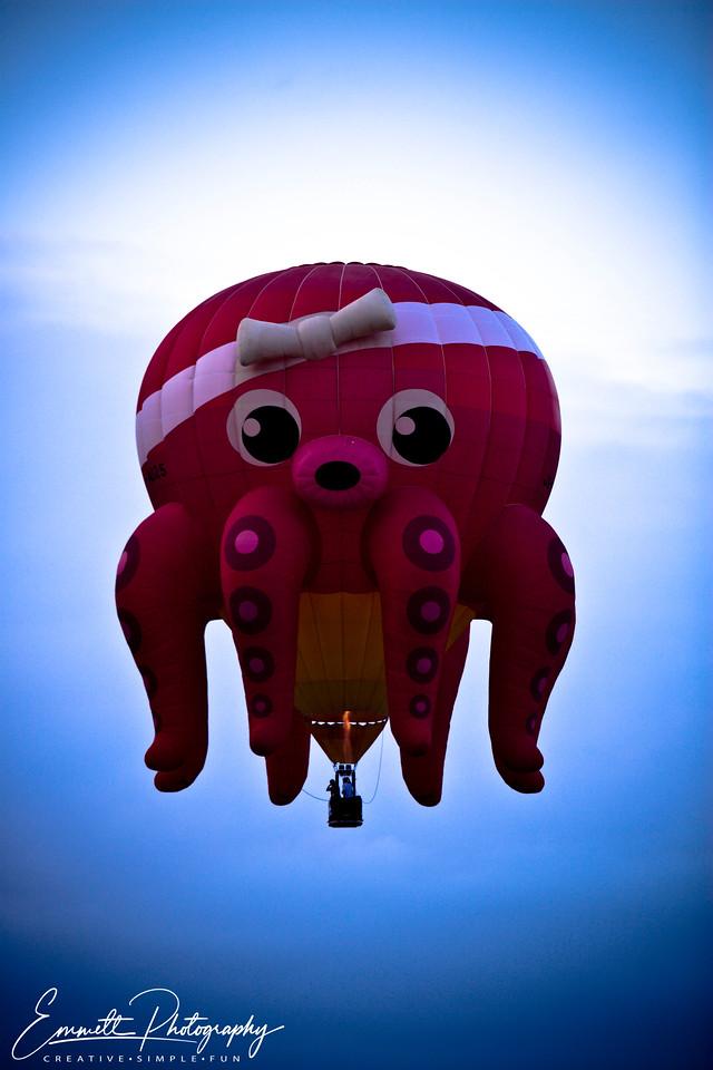 20080208_Balloon_Fest_019