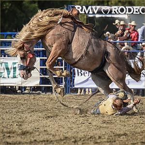 Cowboy Down 18x18