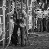 Bull Rider 3bw