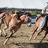 Horse on Run