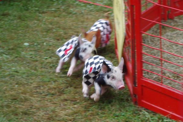 '17 Geauga County Fair Sunday 2