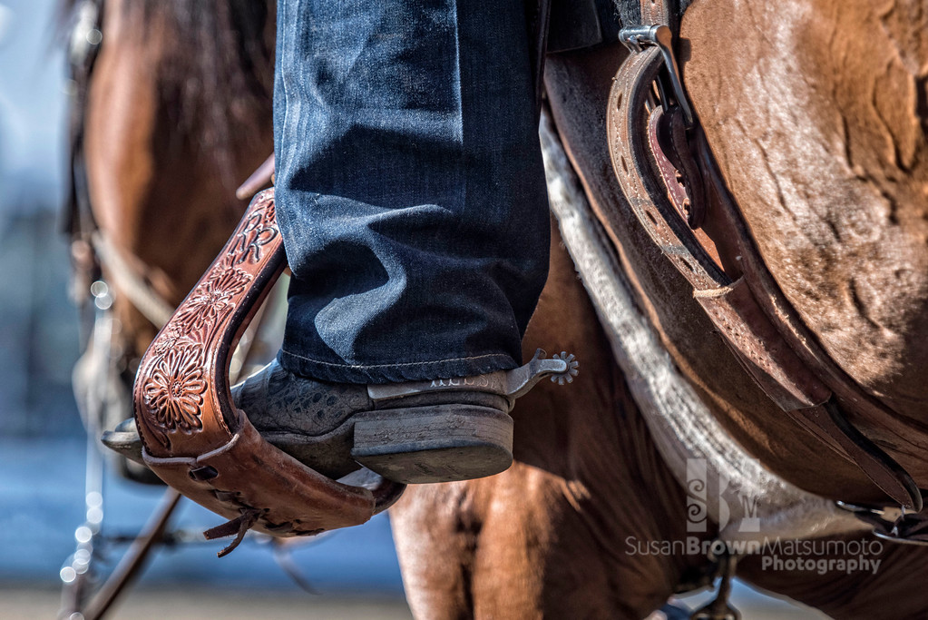 Boot and Stirrup_DSC4119 copy
