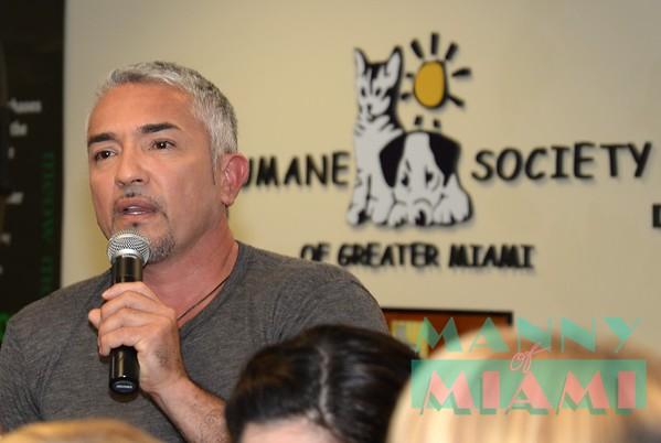 2-26-14--Cesar Millan visits the Humane Society of Greater Miami