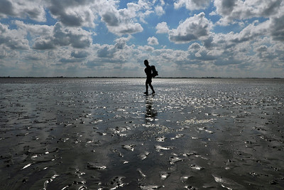 Walking back to the mainland at low tide - National Park Wadden See