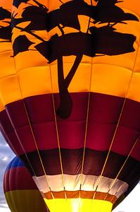 20081006 Albuquerque Balloon Fiesta 078