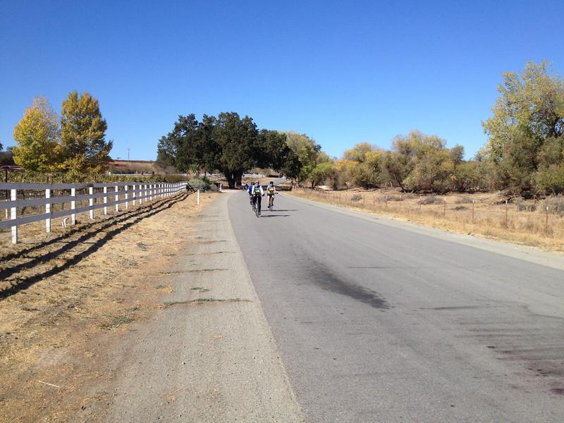More riders on Estrella Road