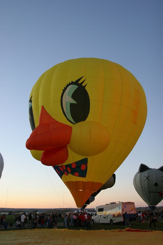 USA, New Mexico, Albuquerque, 2005 Albuquerque International Balloon Fiesta