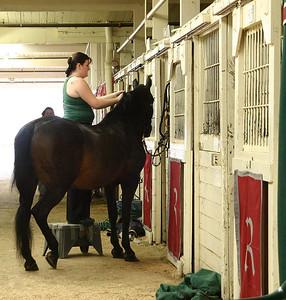 Horse Barn %2833523451%29