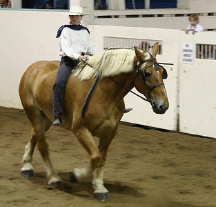 Bareback Draft Horse Ride %2833523444%29