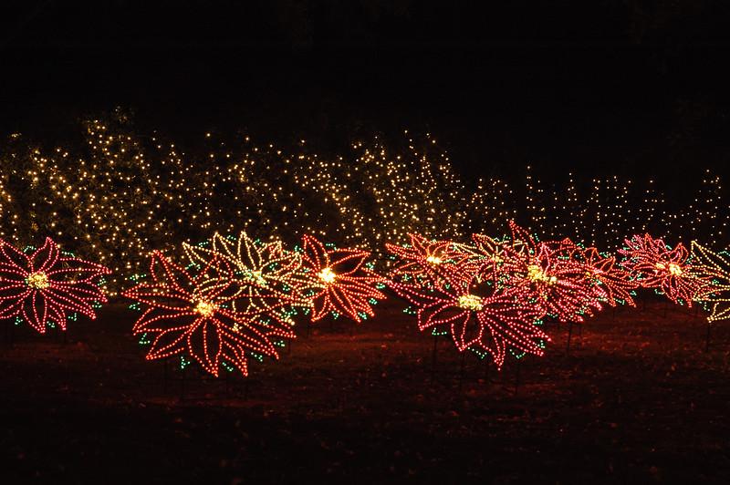 20041218 Bellingrath Christmas Lights 060