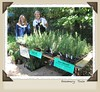 Whole Foods Mkt's Kathy Sage & Judith Goldstein selling rosemary [full reslton-72 prcnt size]