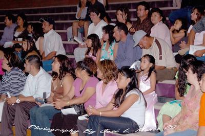 2006-06-08-014