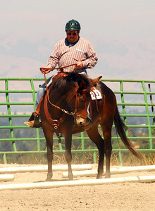 """Doug Jones #111 riding his mule, """"Toby"""", in one of the trail classes."""
