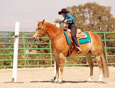 """Dixie Luebcke rides """"Glowin Millenium"""" in one of the Trail Classes."""