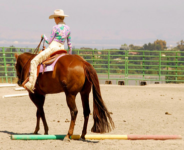 """Sarah Deane rides """"Go Ahead Make Me Grey"""" in one of the Trail Classes."""
