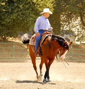 """Butch Coggins riding """"Doc Squaw Chex"""" #219"""