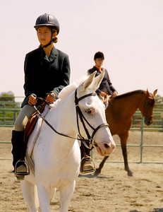 """Adeline Jones #109 rides her mule, """"Audrey"""" in the English Equitation Walk/Trot Class"""