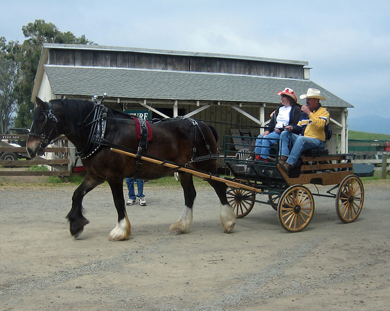 Rush Ranch Days 2006