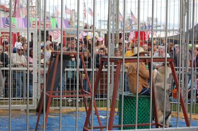 0609 State Fair 055