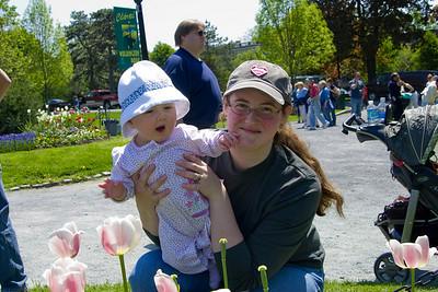 Tulip Festival 2007-8