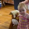 """""""I got a pony!"""""""