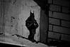 Batman watching over a show at Tuxedo Cat