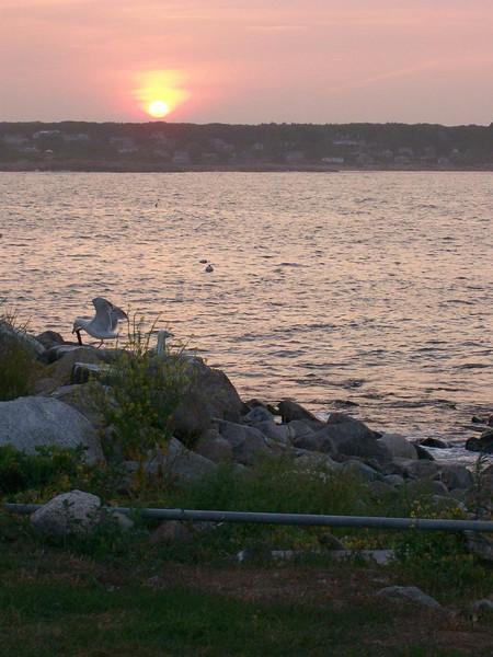 Sunset on the Island.