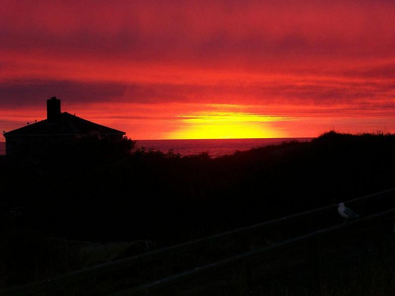 Sunrise on the Island.