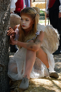 DSC_3516tree angel