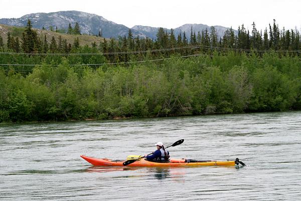 IMG_5444 Tiger YRQ test paddle