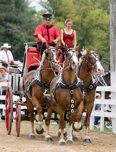The Rock Creek Belgians of Prophetstown, Ill. won first place in the draft registered unicorn hitch competition at the Boone County Fair on Saturday, August 9.