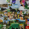 Close-up of Sohini's collage