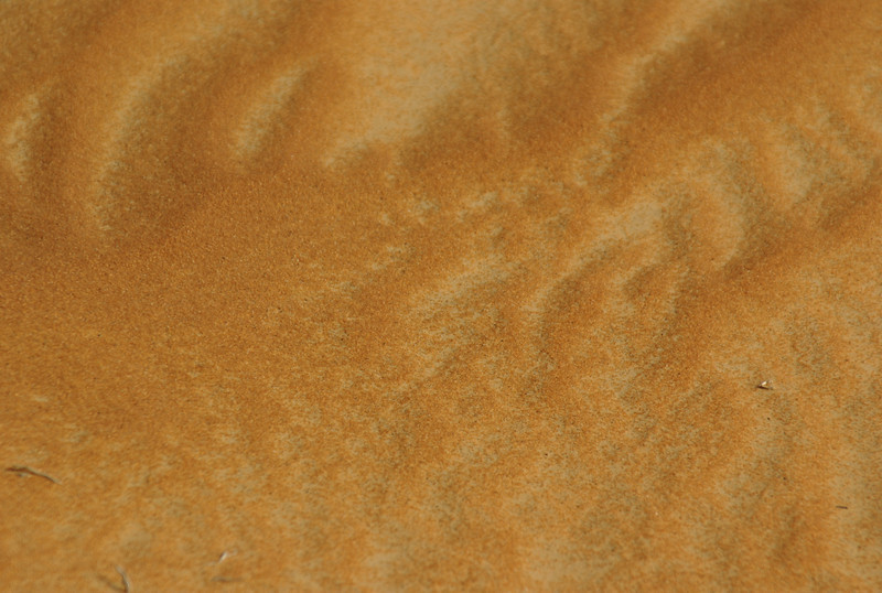 A close-up of the sand of the dunes of the Liwa desert, in the UAE close to the Saudi Arabi border.