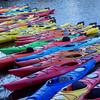 Many many kayaks.