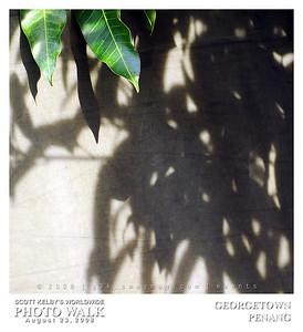 G3K_photowalk112s