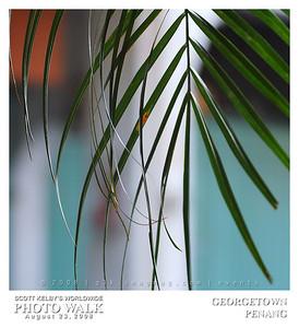 G3K_photowalk115s