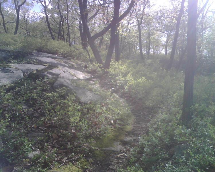 20090510-34
