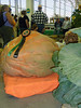 One big pumpkin...