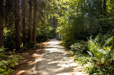 Entering Camp Long in West Seattle.  Camp Long is an urban forest with shaded paths, small cabins, and an open meadow for performances.