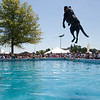 Record-Eagle/Douglas Tesner<br /> A dog flies high as fans cheer during the Ultimate Air Dogs contest in the Open Space.