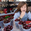 Record-Eagle/Douglas Tesner<br /> Claire Lammers samples some sweet cherries as she sets up at Gallagher's Farm Market in the Open Space.
