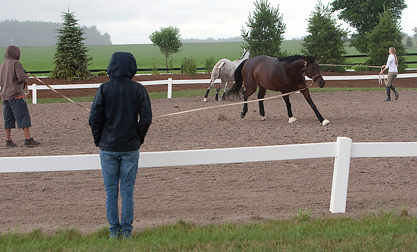 Record-Eagle/Douglas Tesner<br /> Mary Miglets, of Columbus, Ohio, watches as her horse Ava works out with Javier Lajun.