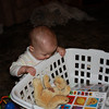 While I was folding laundry, he decided to turn around and see what was in the laundry basket