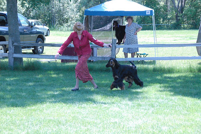 2009 NCGSC Dog 12-18 months