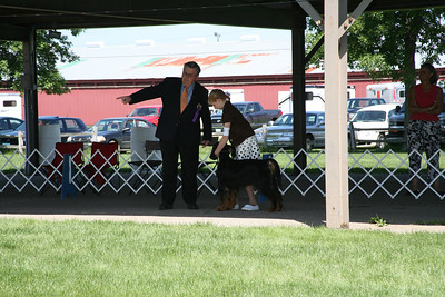 2009 NCGSC Junior Showmanship