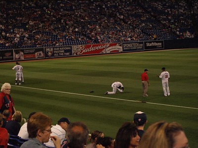 2009 Twins vs. Royals (Metrodome)