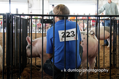 "07.25.11 = Showmanship  Growing up in ""Burbs"" as I did, I had very little exposure to farm animals.  The closest I really got was when we fed the goats at the zoo and the ducks at the pond, but I never milked a cow, raised a pig or bred rabbits.  So it's been fun watching my niece and nephew over the years at the fair with their 4H animals.  The level of dedication and commitment to their animals has been a very proud observation.  Congratulations Mitch, you've become quite a showman!  ""The price of success is hard work, dedication to the job at hand and the determination that whether we win or lose, we have applied the best of ourselves to the task at hand.""  Vince Lombardi"