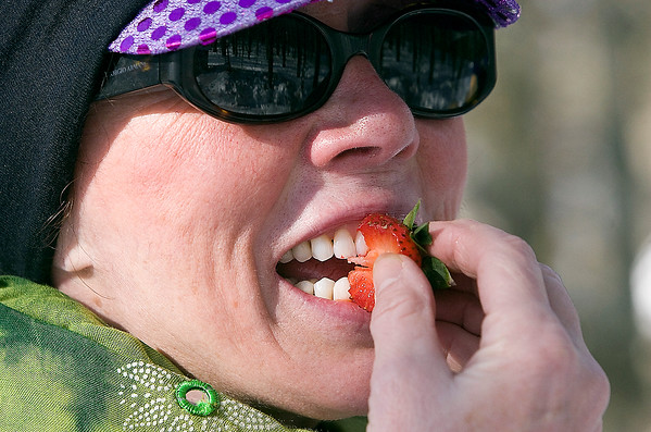 Record-Eagle/Douglas Tesner<br /> Pam Fitzgibbon, of Traverse City, enjoys a strawberry at one of three food stations along the route of the 11th Annual Women's Winter Tour held at Crystal Mountain.